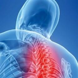 Грыжа грудного отдела позвоночника
